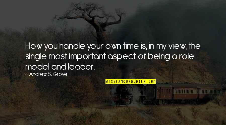 In My Own Time Quotes By Andrew S. Grove: How you handle your own time is, in