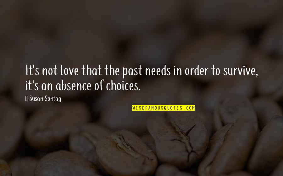 In Order To Love Quotes By Susan Sontag: It's not love that the past needs in