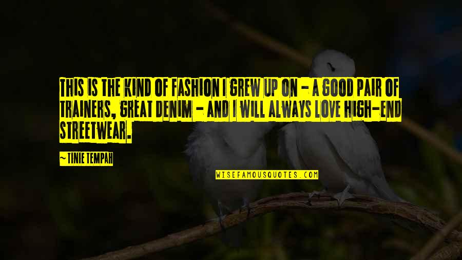 In The End I Will Always Love You Quotes By Tinie Tempah: This is the kind of fashion I grew