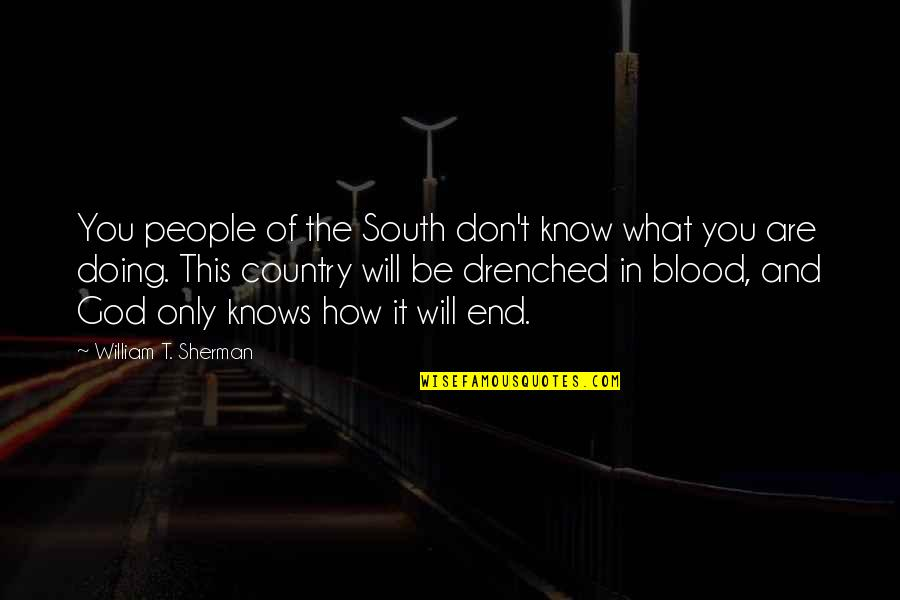 In The End It Only You Quotes By William T. Sherman: You people of the South don't know what