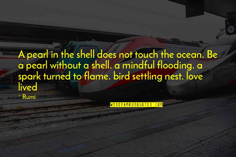 In Touch Quotes By Rumi: A pearl in the shell does not touch