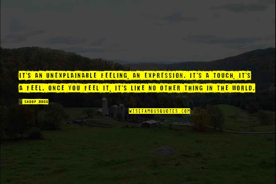 In Touch Quotes By Snoop Dogg: It's an unexplainable feeling, an expression. It's a