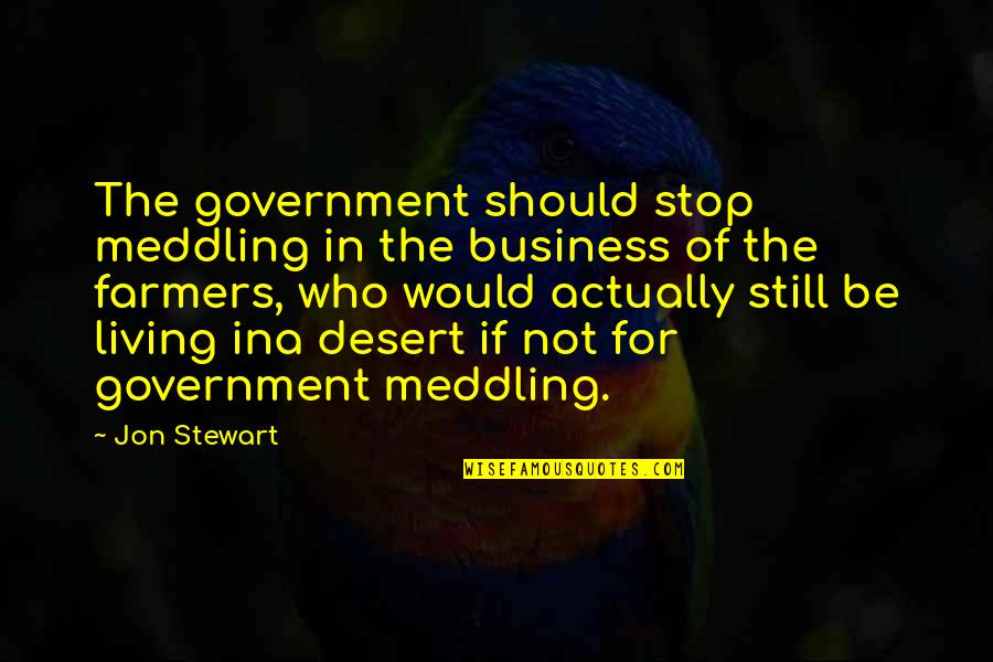 Ina Quotes By Jon Stewart: The government should stop meddling in the business