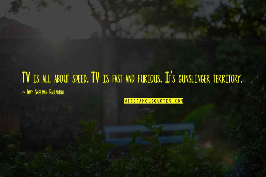 Incense Sticks Quotes By Amy Sherman-Palladino: TV is all about speed. TV is fast