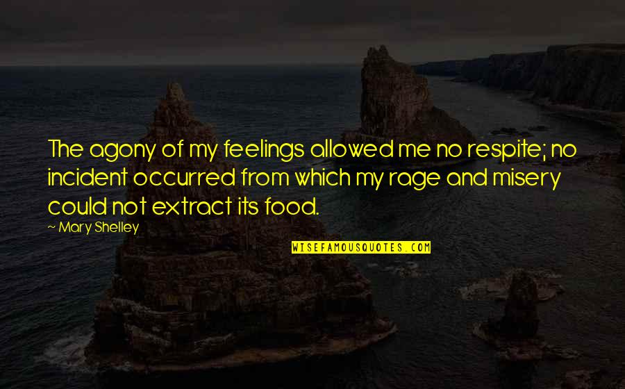 Incident Quotes By Mary Shelley: The agony of my feelings allowed me no