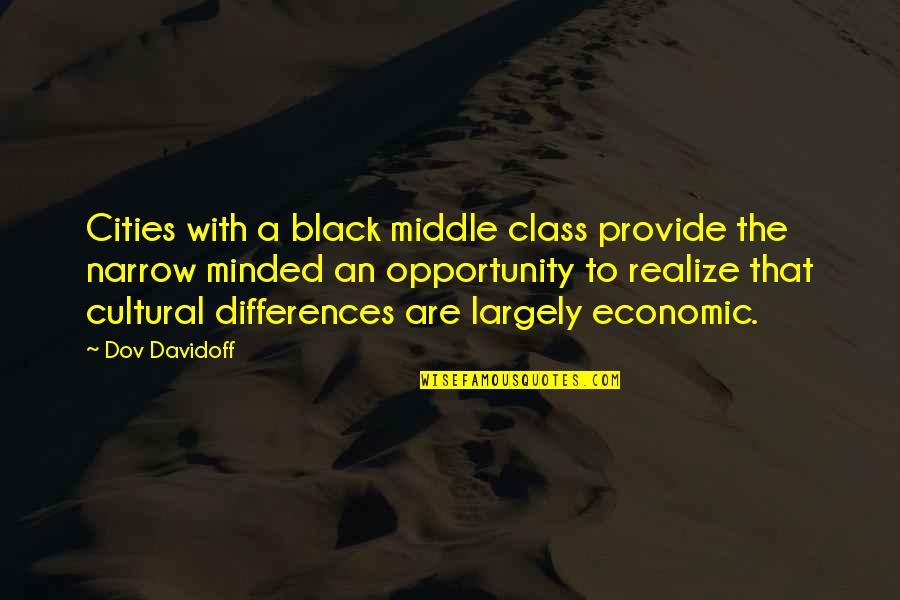 Increase Business Quotes By Dov Davidoff: Cities with a black middle class provide the