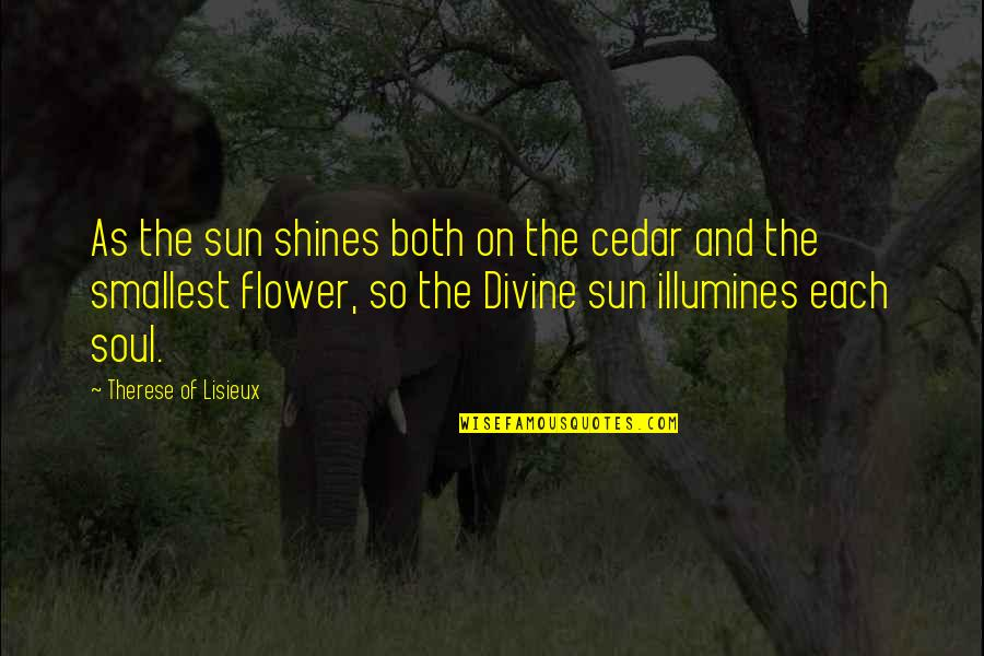 Incriminating Bible Quotes By Therese Of Lisieux: As the sun shines both on the cedar
