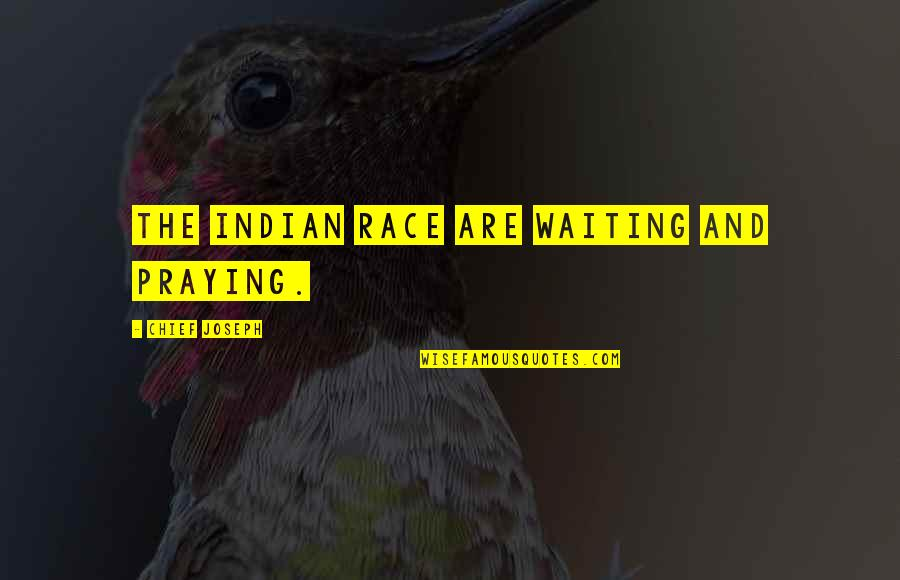 Indian Chief Quotes By Chief Joseph: The Indian race are waiting and praying.