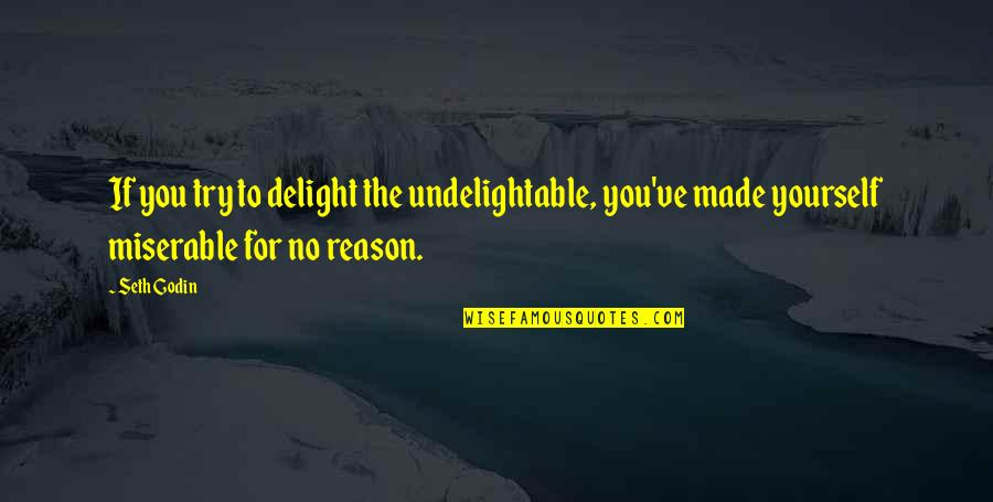Inevadible Quotes By Seth Godin: If you try to delight the undelightable, you've