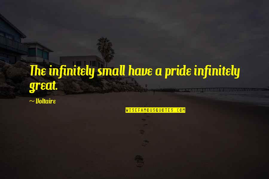 Infinitely Quotes By Voltaire: The infinitely small have a pride infinitely great.