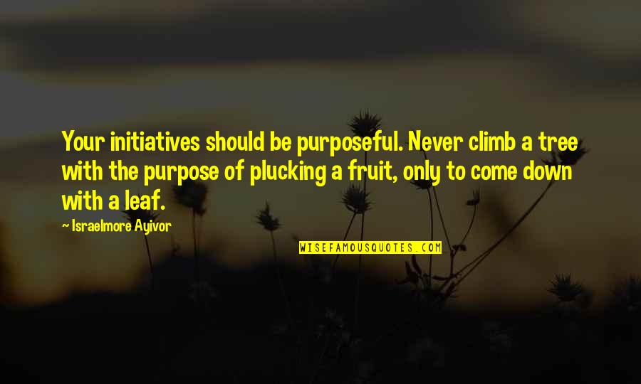 Initiatives Quotes By Israelmore Ayivor: Your initiatives should be purposeful. Never climb a