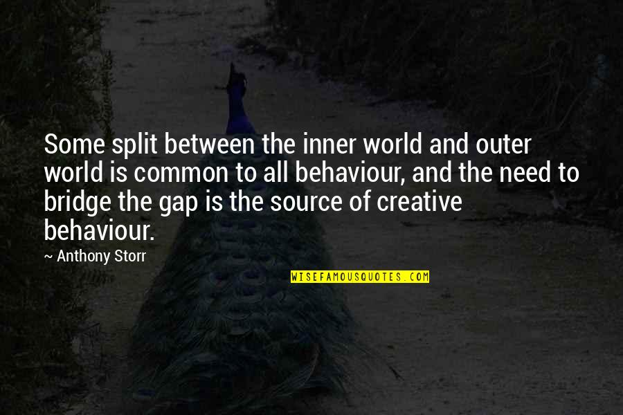 Inner World Outer World Quotes By Anthony Storr: Some split between the inner world and outer