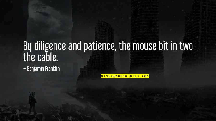 Innocent Smoothies Quotes By Benjamin Franklin: By diligence and patience, the mouse bit in