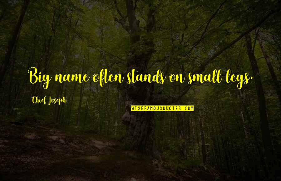 Innocent Smoothies Quotes By Chief Joseph: Big name often stands on small legs.