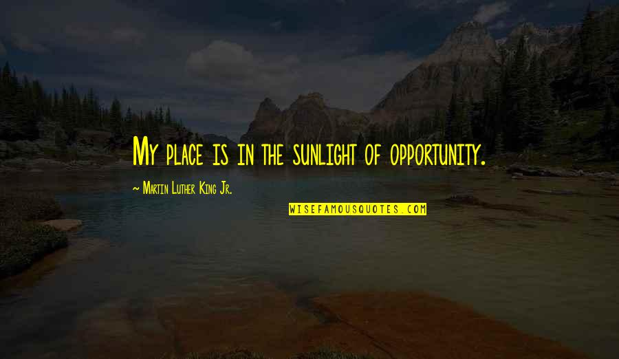 Innocent Smoothies Quotes By Martin Luther King Jr.: My place is in the sunlight of opportunity.