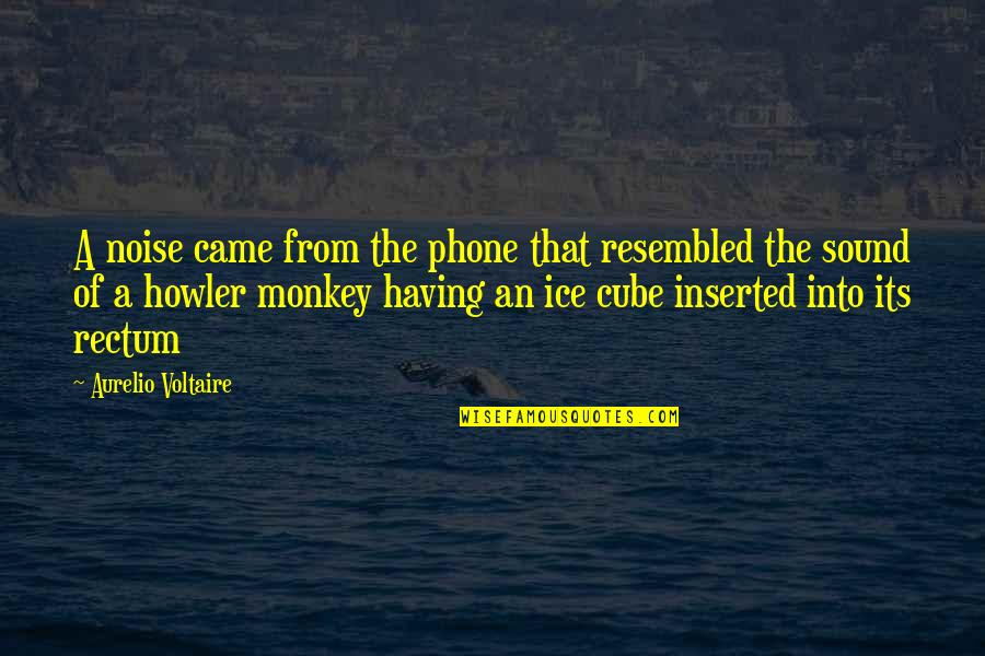 Inserted Quotes By Aurelio Voltaire: A noise came from the phone that resembled