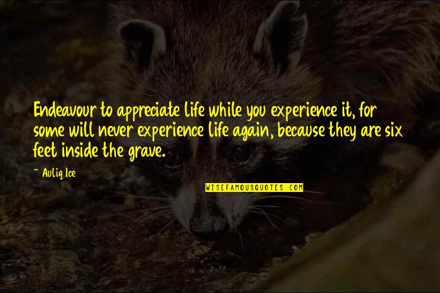 Inside Happiness Quotes By Auliq Ice: Endeavour to appreciate life while you experience it,