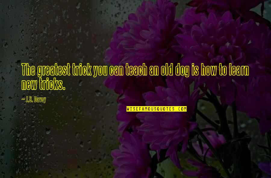Inspirational Age Quotes By J.S. Davey: The greatest trick you can teach an old