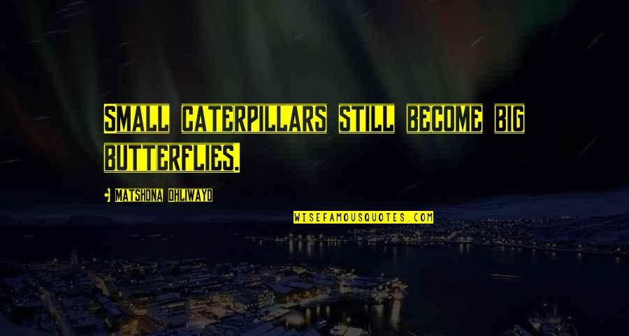Inspirational Caterpillars Quotes By Matshona Dhliwayo: Small caterpillars still become big butterflies.
