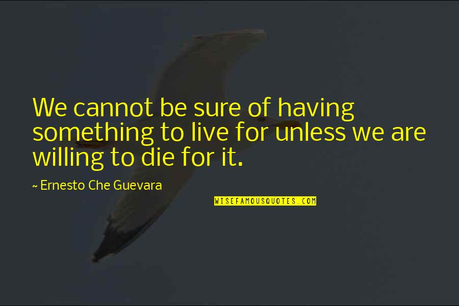 Inspirational Che Guevara Quotes By Ernesto Che Guevara: We cannot be sure of having something to