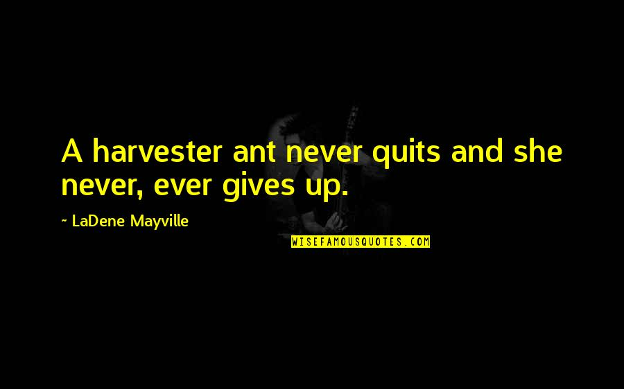 Inspirational Children's Quotes By LaDene Mayville: A harvester ant never quits and she never,