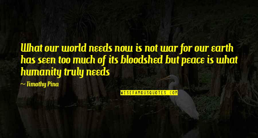 Inspirational Haiti Quotes By Timothy Pina: What our world needs now is not war