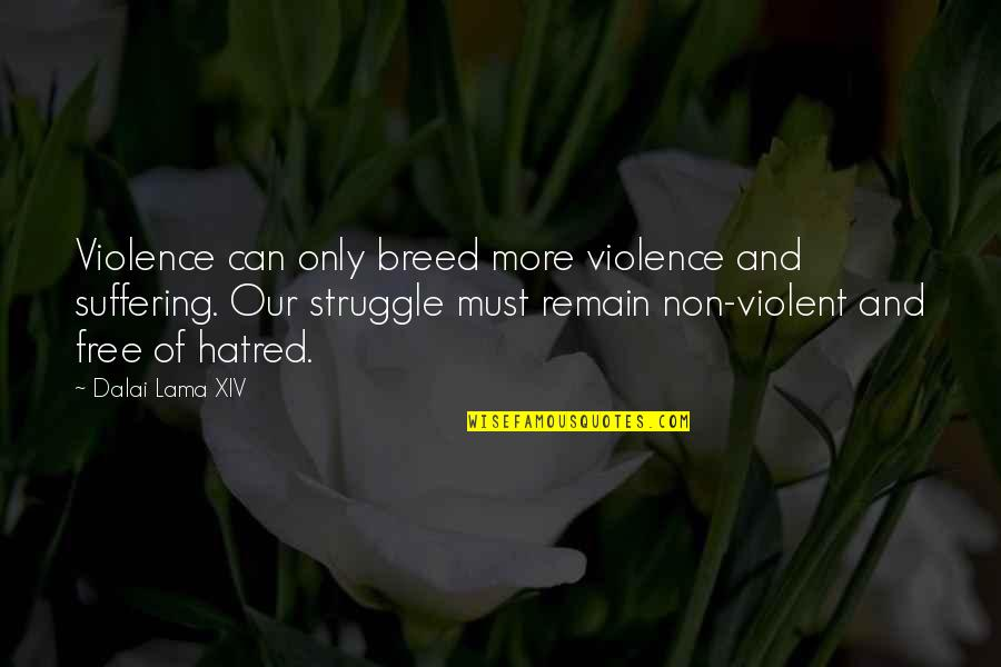 Inspirational Lama Quotes By Dalai Lama XIV: Violence can only breed more violence and suffering.