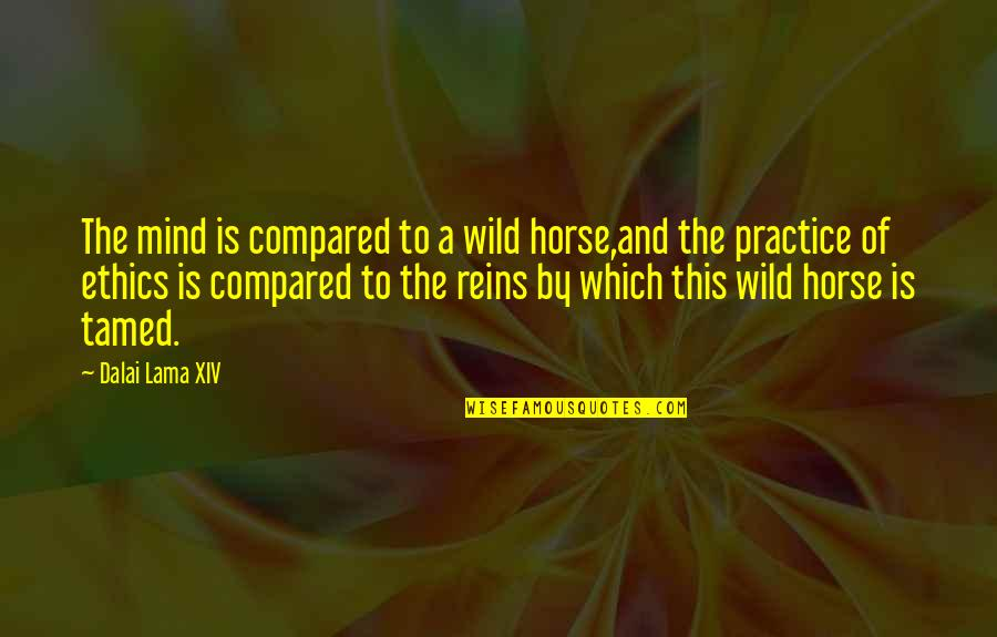 Inspirational Lama Quotes By Dalai Lama XIV: The mind is compared to a wild horse,and