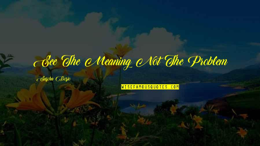 Inspirational Life Problem Quotes By Sascha Bosio: See The Meaning Not The Problem