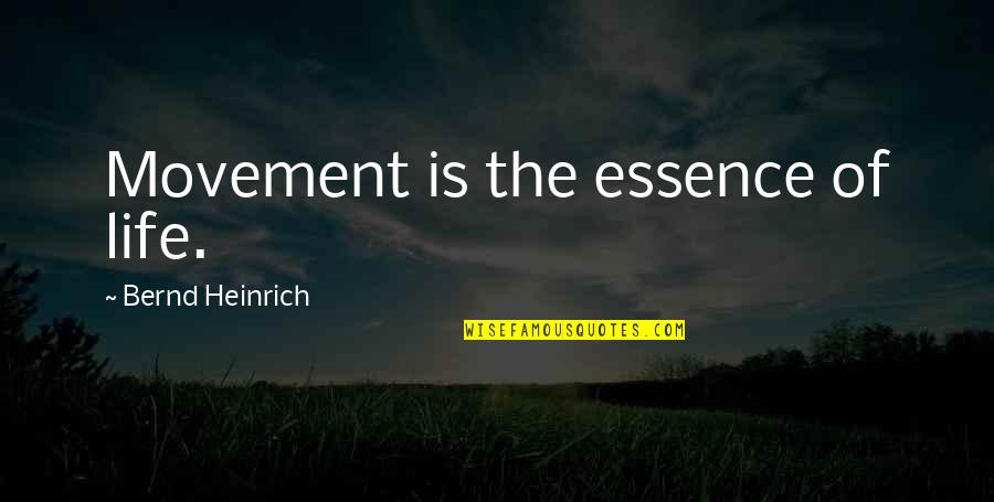 Inspirational Running Life Quotes By Bernd Heinrich: Movement is the essence of life.