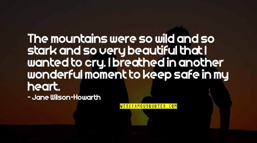 Inspirational Safe Travel Quotes By Jane Wilson-Howarth: The mountains were so wild and so stark