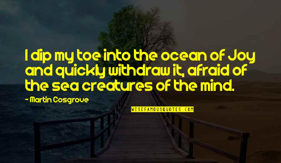 Inspirational Sea Quotes By Martin Cosgrove: I dip my toe into the ocean of