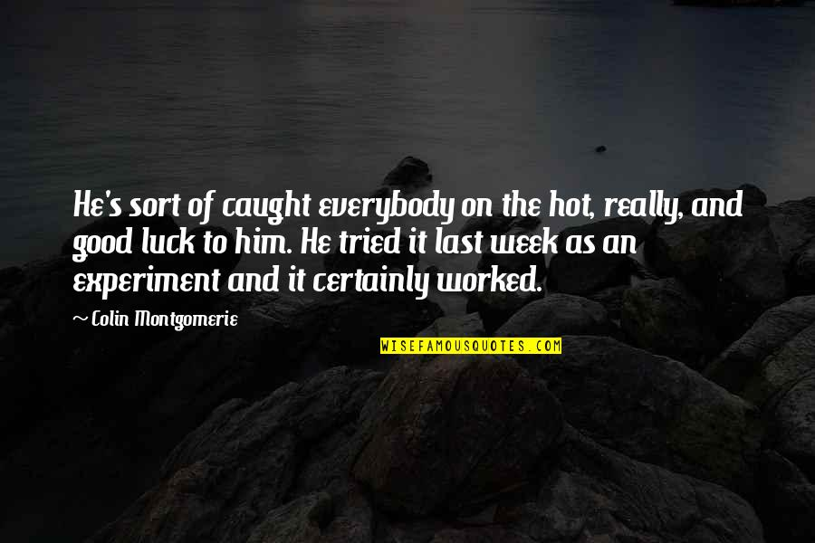 Inspirational Senior Citizen Quotes By Colin Montgomerie: He's sort of caught everybody on the hot,