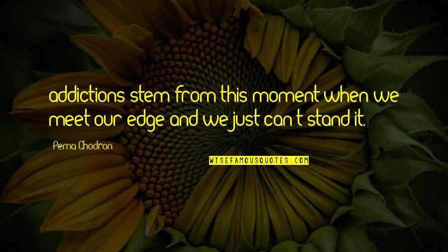 Inspirational Senior Citizen Quotes By Pema Chodron: addictions stem from this moment when we meet