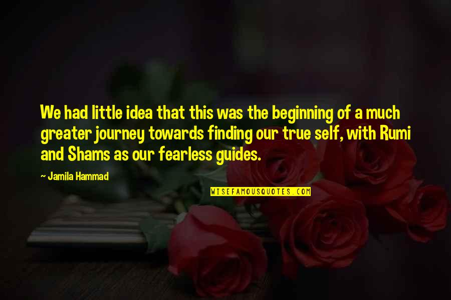 Inspirational True Quotes By Jamila Hammad: We had little idea that this was the