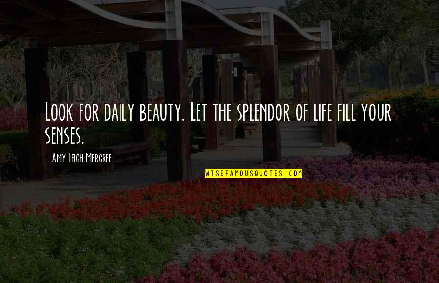 Inspirational Tumblr Quotes By Amy Leigh Mercree: Look for daily beauty. Let the splendor of