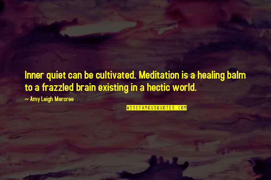 Inspirational Tumblr Quotes By Amy Leigh Mercree: Inner quiet can be cultivated. Meditation is a
