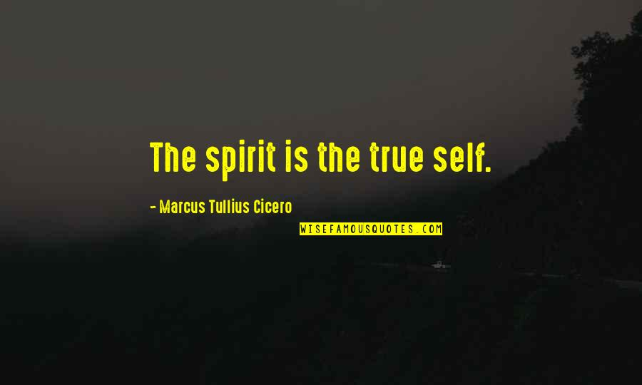 Inspire Aced Quotes By Marcus Tullius Cicero: The spirit is the true self.