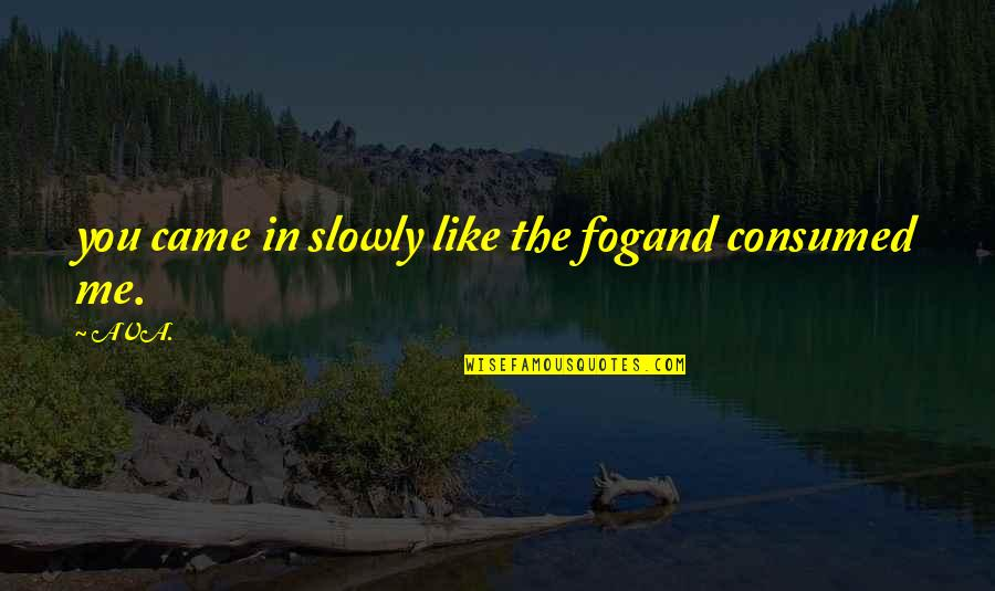 Inspire Me Quotes Quotes By AVA.: you came in slowly like the fogand consumed
