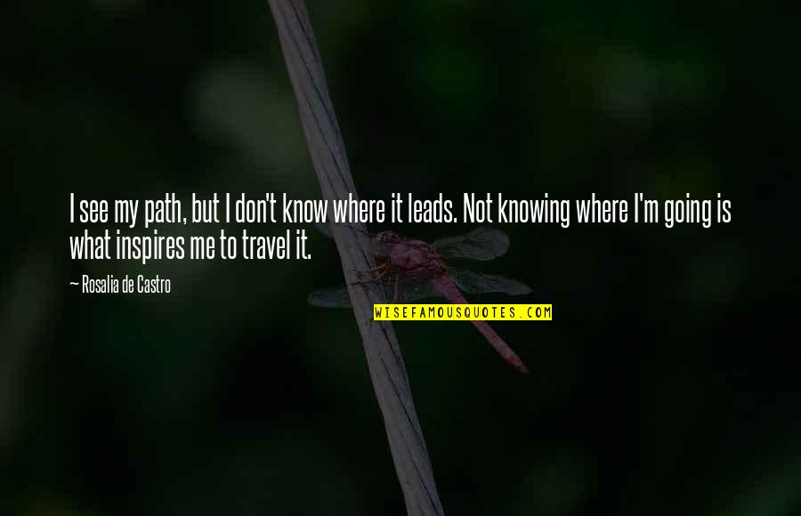 Inspires Me Quotes By Rosalia De Castro: I see my path, but I don't know