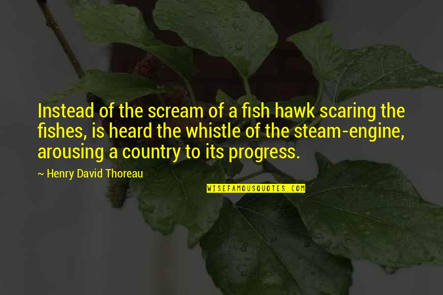 Instead Of Quotes By Henry David Thoreau: Instead of the scream of a fish hawk