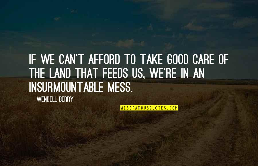 Insurmountable Quotes By Wendell Berry: If we can't afford to take good care