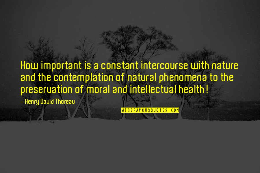 Intellectual Intercourse Quotes By Henry David Thoreau: How important is a constant intercourse with nature