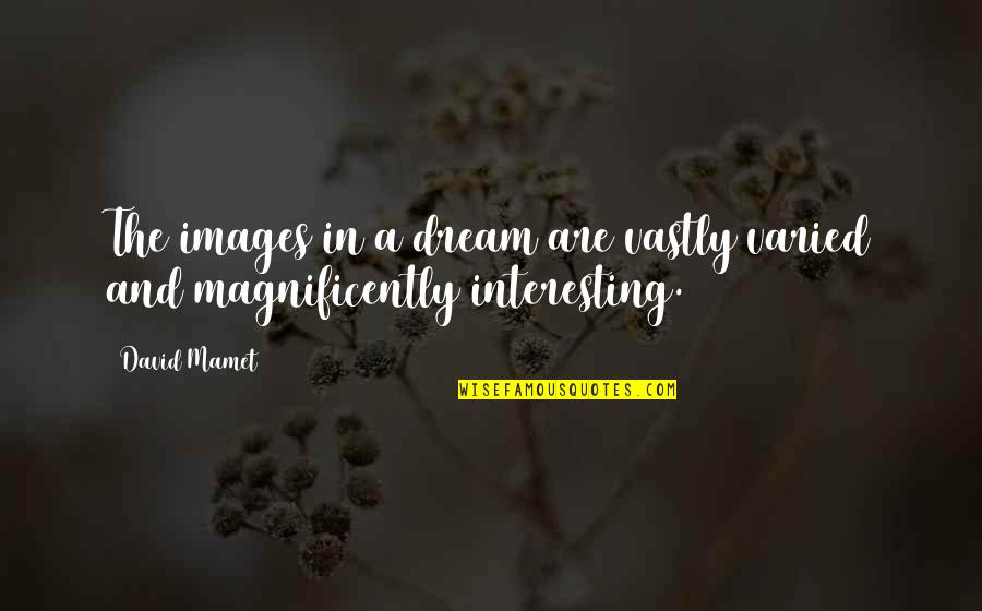 Interesting Images And Quotes By David Mamet: The images in a dream are vastly varied