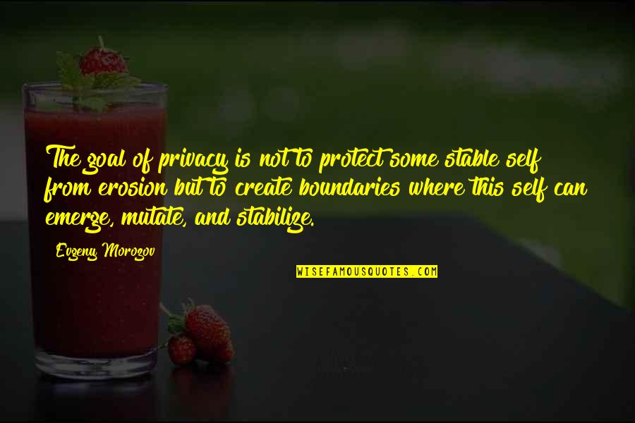 Internet Technology Quotes By Evgeny Morozov: The goal of privacy is not to protect