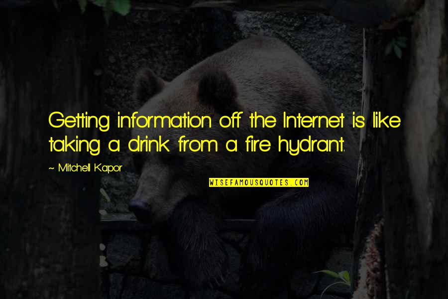 Internet Technology Quotes By Mitchell Kapor: Getting information off the Internet is like taking