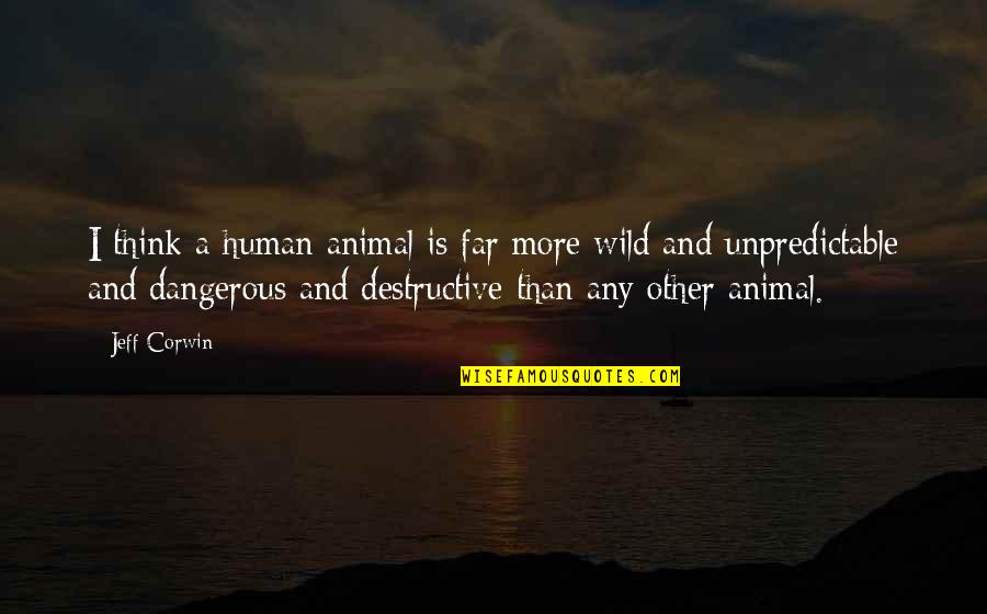 Intertwinedness Quotes By Jeff Corwin: I think a human animal is far more
