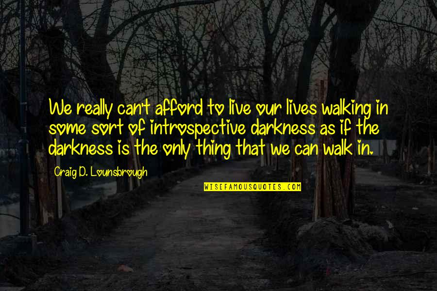 Introspective Quotes By Craig D. Lounsbrough: We really can't afford to live our lives