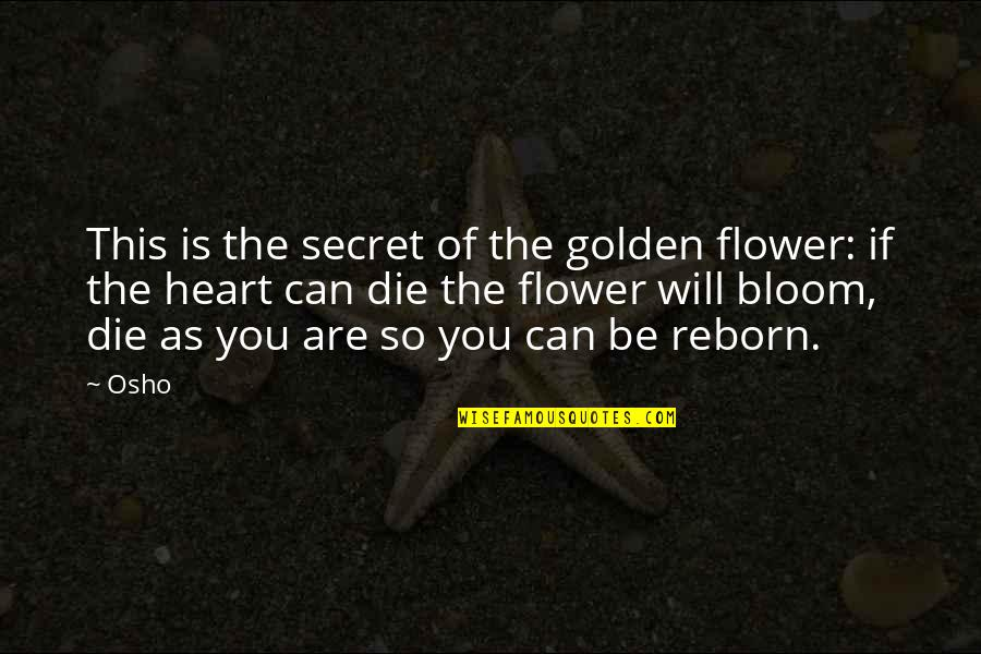 Inventory Related Quotes By Osho: This is the secret of the golden flower: