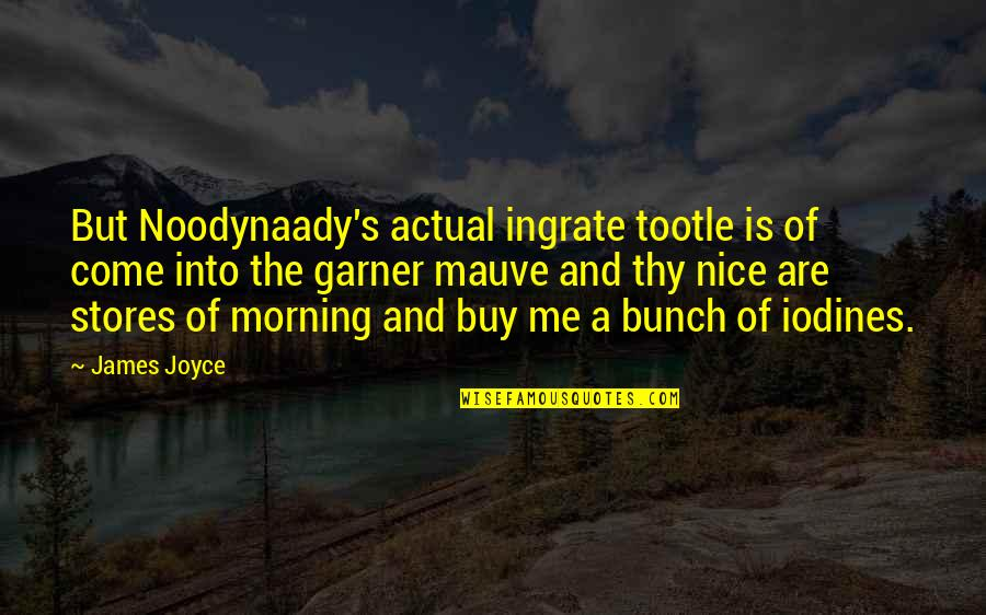Iodines Quotes By James Joyce: But Noodynaady's actual ingrate tootle is of come